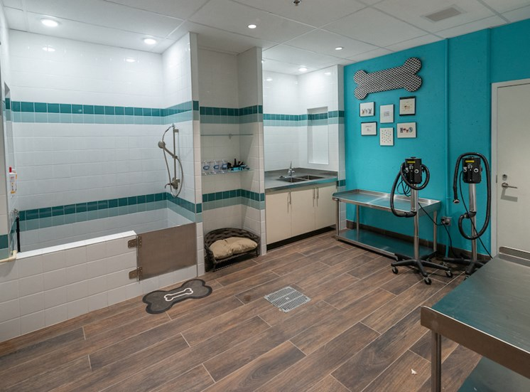 Pet Spa and Pampering Station at The Pearl, Silver Spring