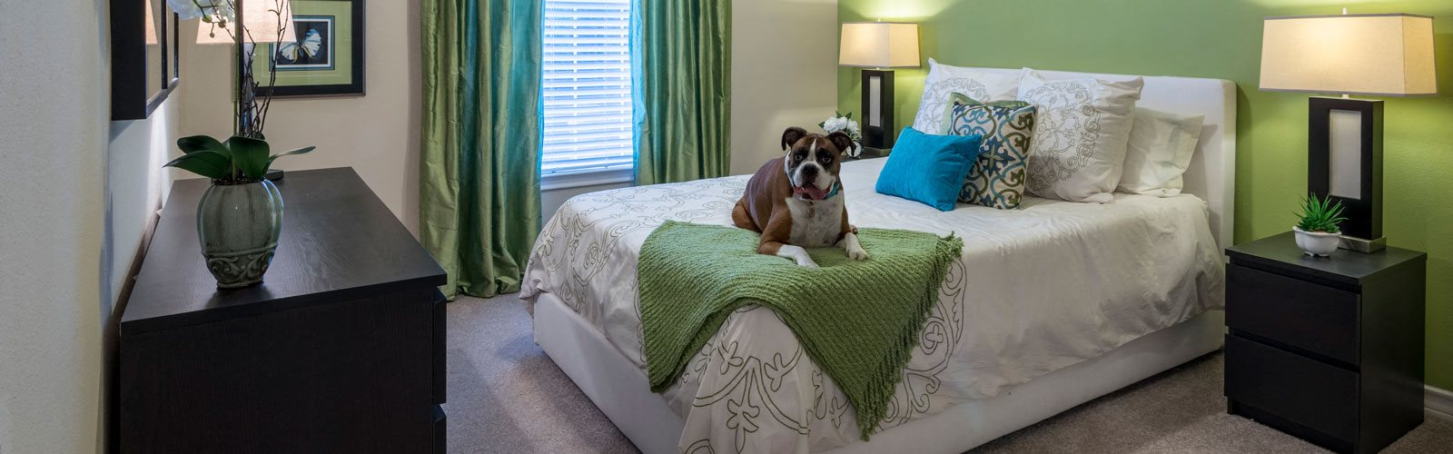 Gorgeous Bedroom With Dog at Wyndchase at Aspen Grove, Franklin, Tennessee