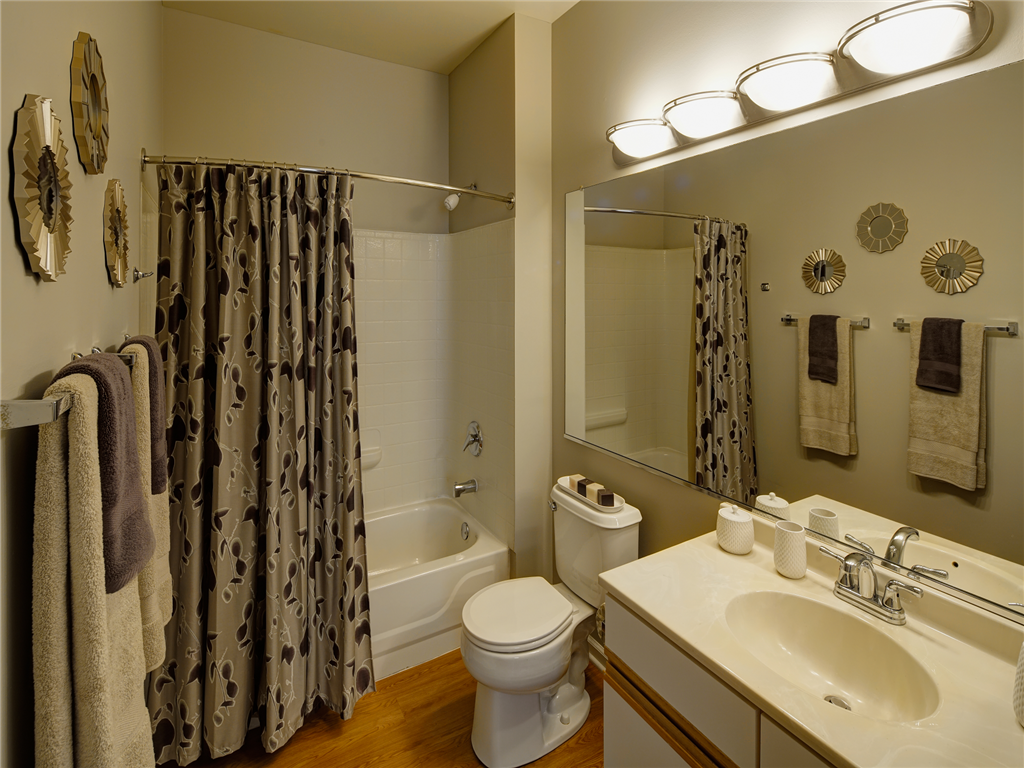Full Size Shower and Tub at HighPoint Community Apartments, Romeoville, IL, 60446