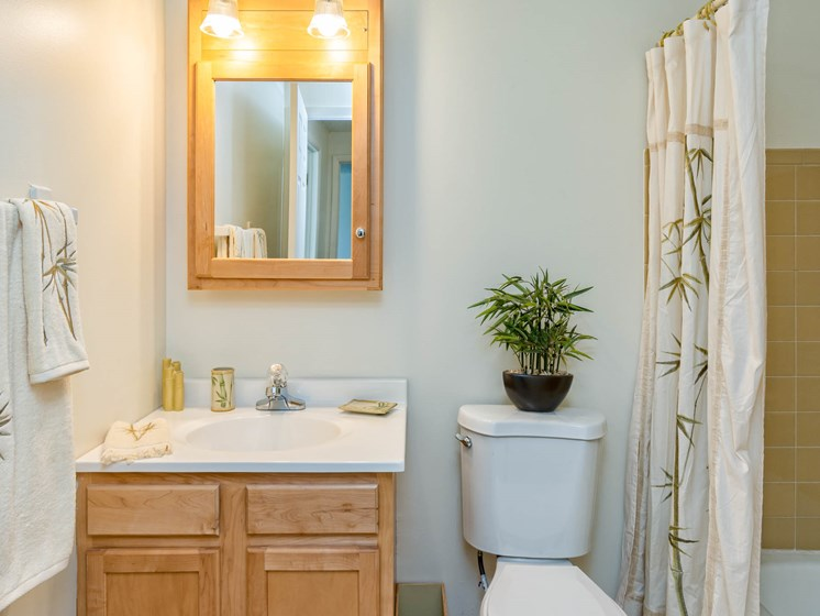 Spacious Bathroom at Long Pond Shores Waterfront Apartments, Rochester, NY