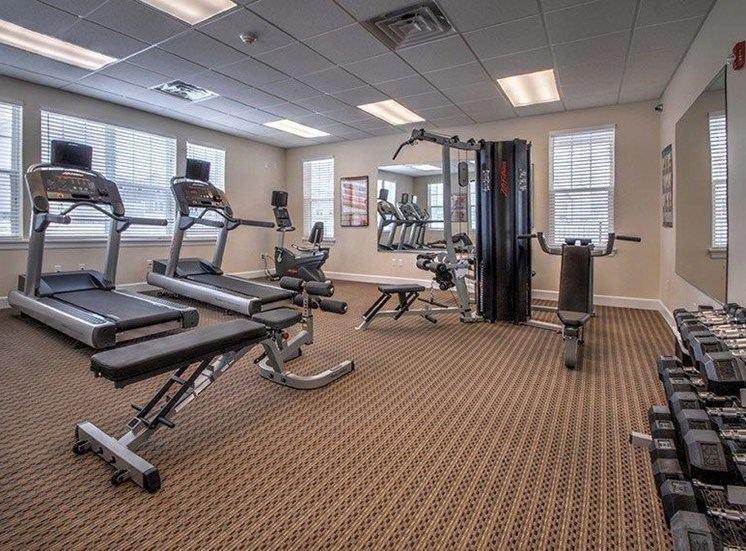 Fitness Center with Cardio Equipment and Free Weights at Townhomes at Pleasant Meadows, New York