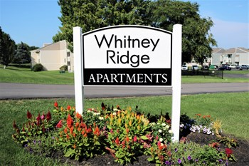 5 Whitney Ridge Rd 3 Beds Apartment for Rent Photo Gallery 1