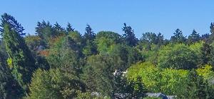 Commons at Redwood Creek Apartments Beaverton OR