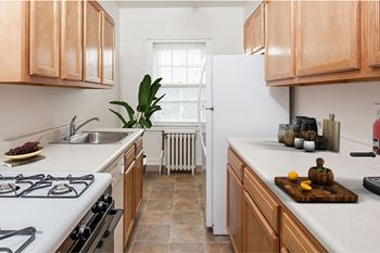 152 Barrington St Studio-2 Beds Apartment for Rent Photo Gallery 1