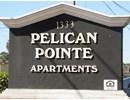 Pelican Pointe Community Thumbnail 1