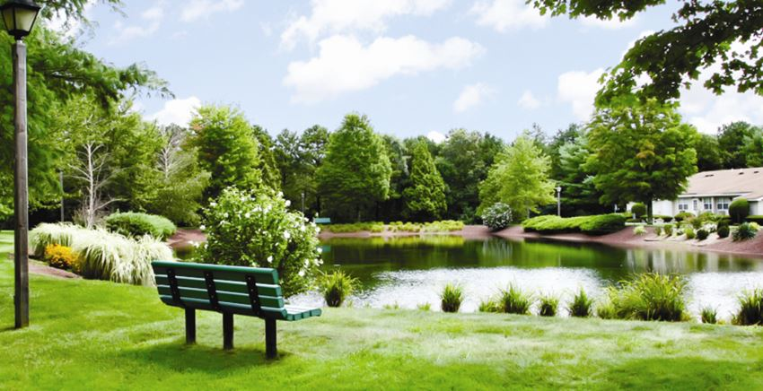cozy bench by the pond  at Pine Hills South, New York, 11955