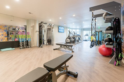 Fitness Center With Updated Equipment at The Bluffs at Highlands Ranch, Highlands Ranch, Colorado