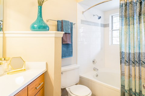 Bathroom With Adequate Storage at The Bluffs at Highlands Ranch, Highlands Ranch, 80129