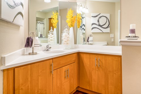 Cabinets In Bathroom at The Bluffs at Highlands Ranch, Highlands Ranch, Colorado