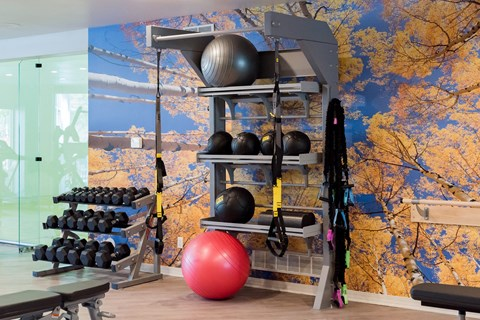Weights In Fitness Center at The Bluffs at Highlands Ranch, Highlands Ranch, CO, 80129
