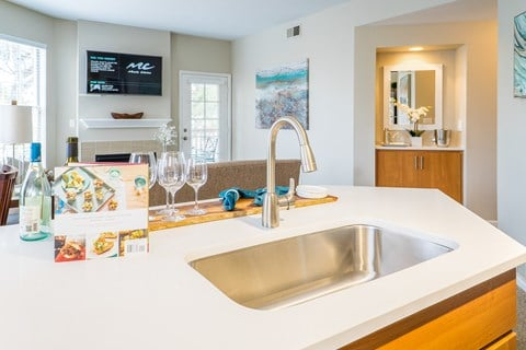 Single Basin Sinks Big Enough For All Of Your Cooking Needs at The Bluffs at Highlands Ranch, Colorado, 80129