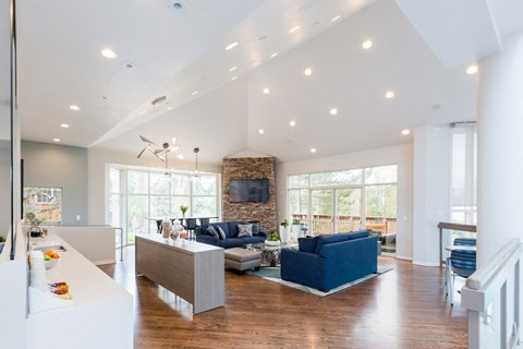 Clubhouse With TV And Sofa at The Bluffs at Highlands Ranch, Highlands Ranch