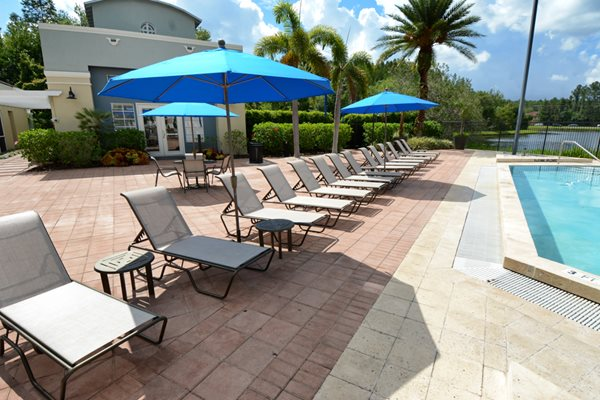 Pool Deck | The Arbors At Carrollwood Apartments in Tampa, FL