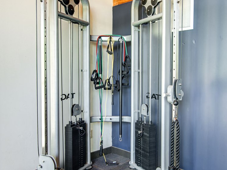 fitness center- weighted machine