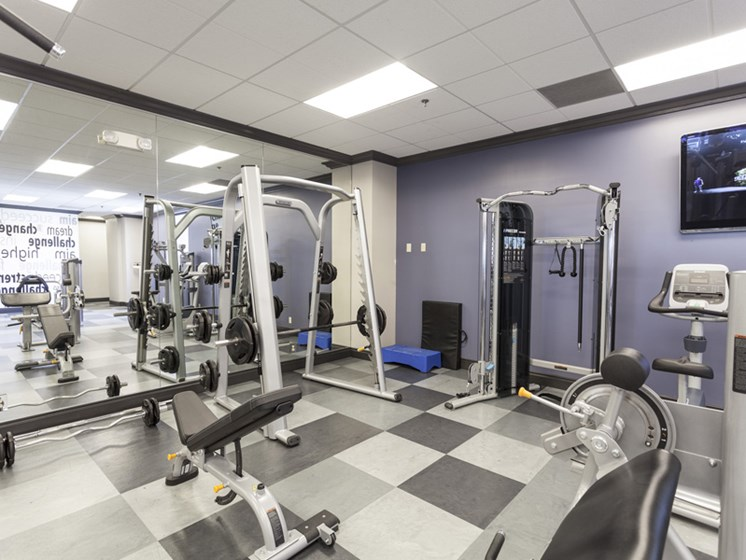 Expansive fitness center, free weights