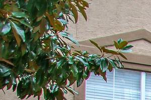 Exterior at 7900 at Park Central Apartments in Dallas, TX
