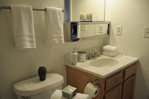 Bathroom at Pickwick Farms Apartments, Indianapolis, IN