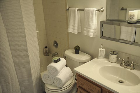Bathroom Interior at Pickwick Farms Apartments, Indianapolis, IN