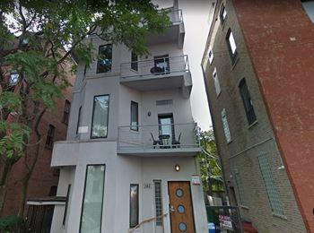 163 W Schiller St Studio-2 Beds Apartment for Rent Photo Gallery 1