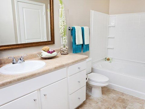 Large bathroom with deep soaking tubs at Weston Lakeside Apartments, 1017 Umstead Hollow Place