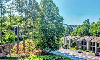1185 Mountain Creek Road 1 Bed Apartment for Rent Photo Gallery 1