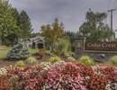 Cedar Crest Community Thumbnail 1