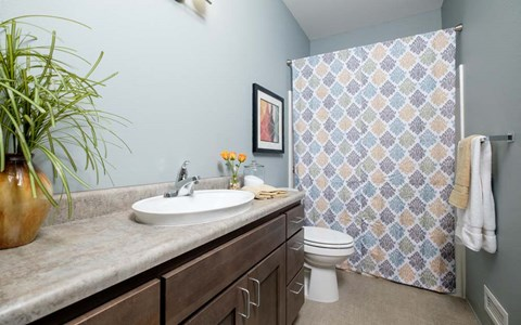 Southern Pointe Townhouses feature a full bath upstairs.