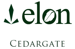 Bloomington Property Logo 1