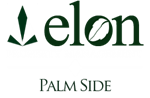 Palm Side Property Logo 0