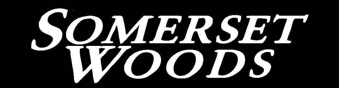 Severn Property Logo 1