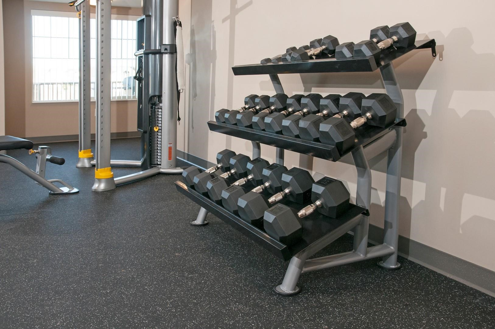Free Weight Rack with Multiple Sizes of Weights in Fitness Studio of Carver Crossing