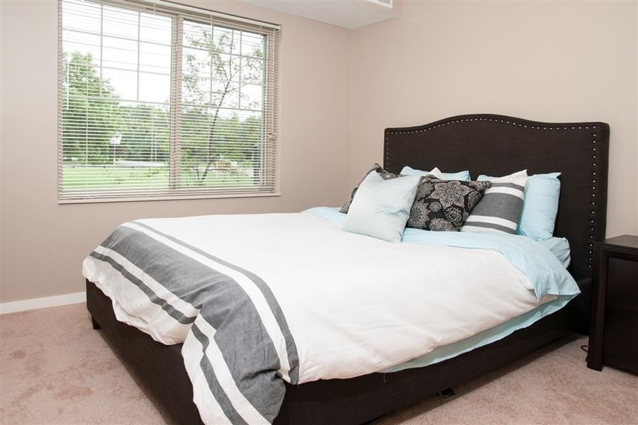 Bright Carver Crossing Master Bedroom with Light Carpet and Large Windows