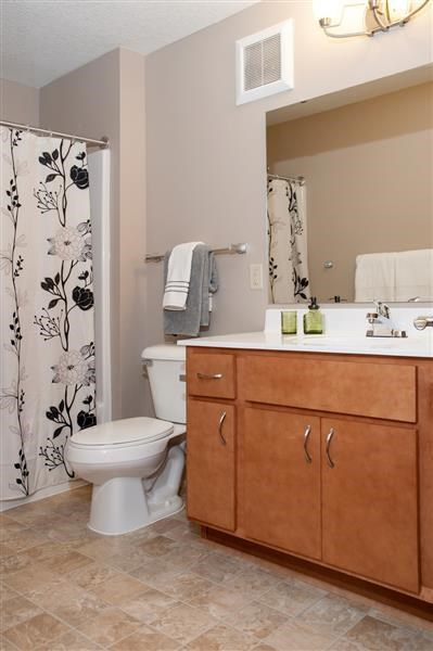 Spacious Master Bathroom with Tub Shower and Large Sink Vanity in Carver MN