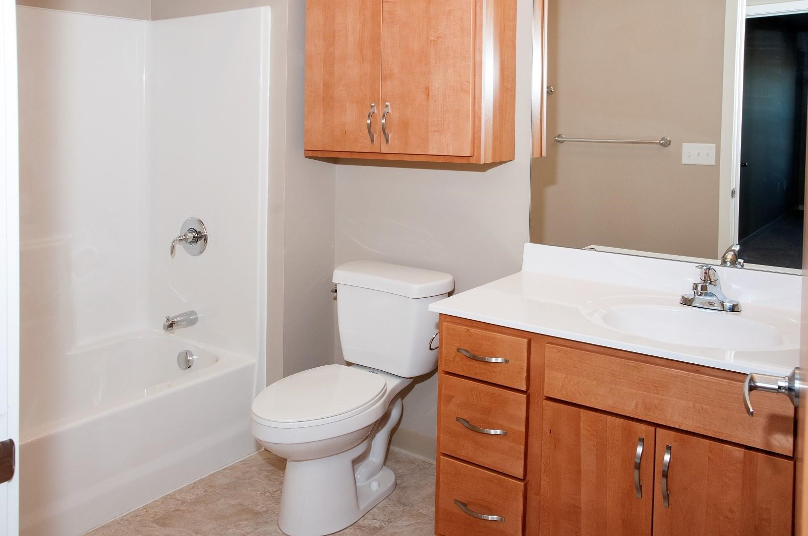 Carver Crossing Apartments Bathroom with Ample Storage with Wood Cabinetry