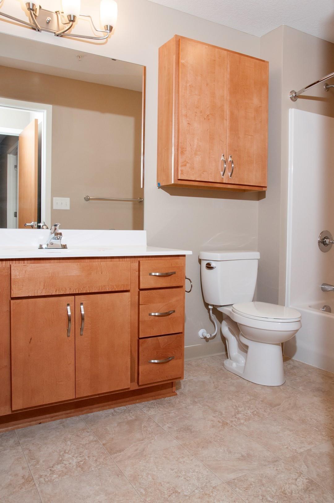 Large Mirror Above Spacious Sink Vanity in Bathroom of Apartment in Carver, Minnesota