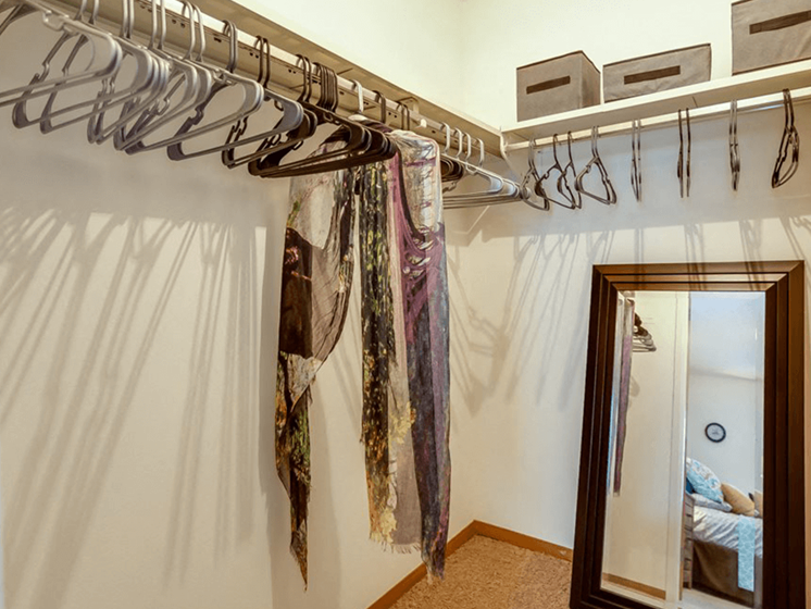 large closets at The Retreat at Woodridge Apartments