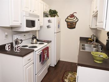 1805 Aquarena Springs 1-2 Beds Apartment for Rent Photo Gallery 1