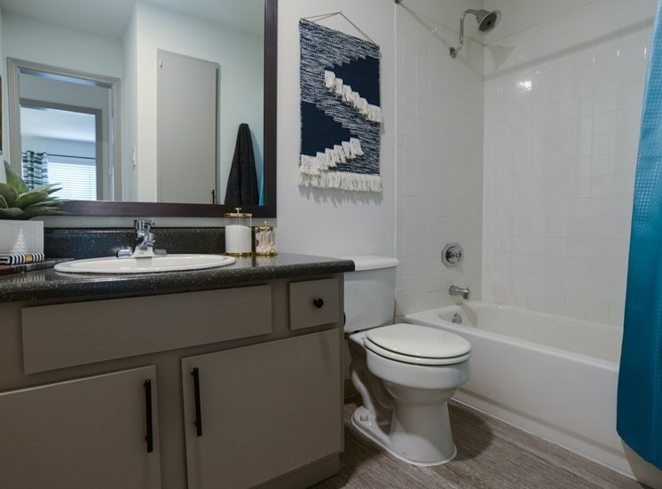 bathroom apartments on william cannon