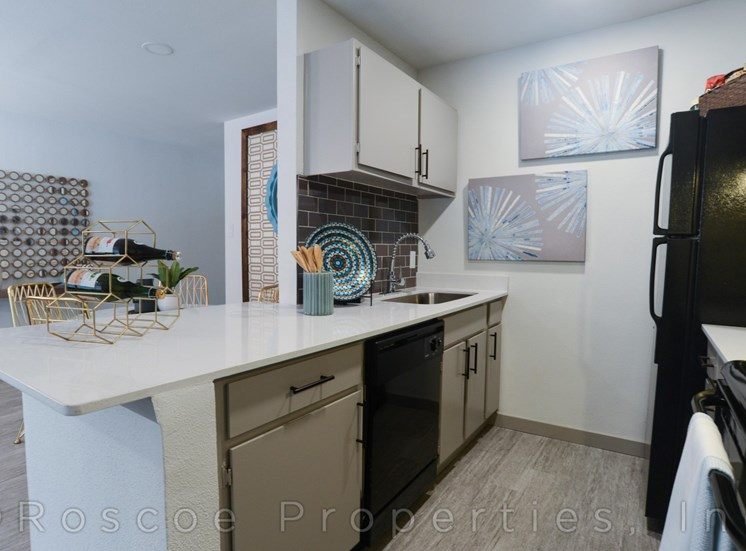 kitchen_2_apartments_on_william_cannon