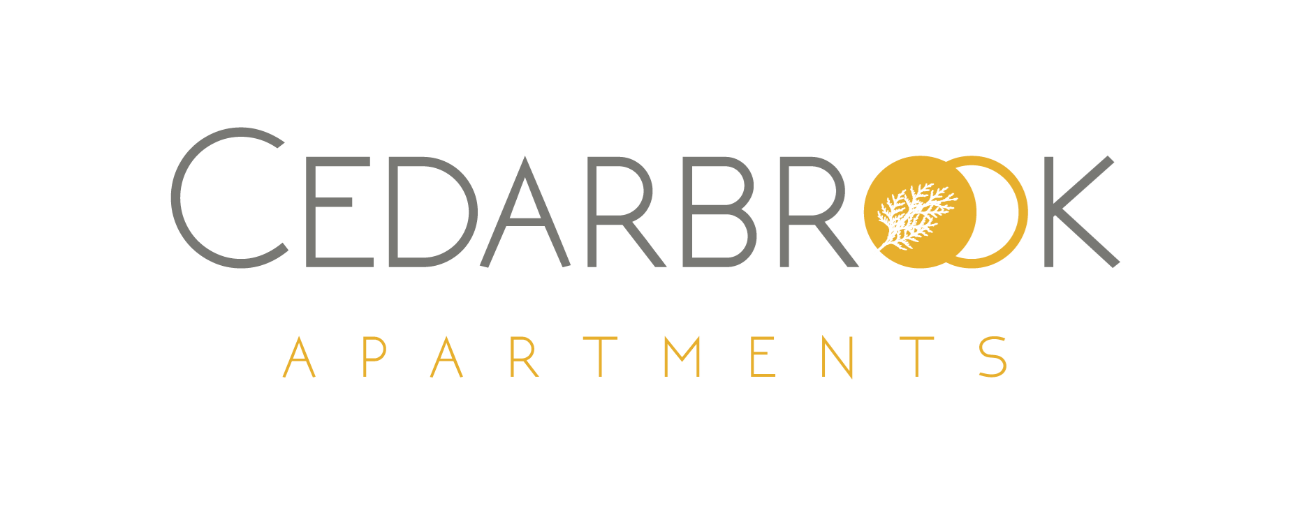 Dallas Property Logo 6