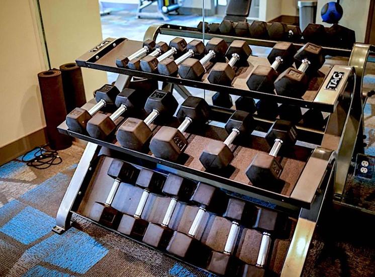 Sanford Landing Apartments, Sanford, FL 32771 Free Weights in Fitness Center