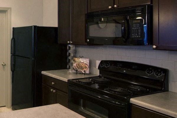 energy efficient black kitchen appliances