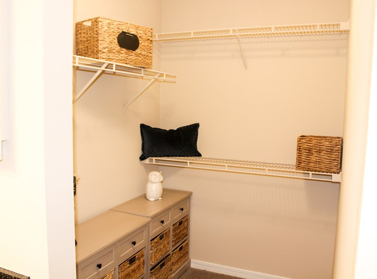 apartment with large walk-in closet, apartment with walk in closet