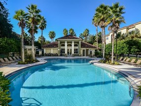 Resort-Style Zero-Entry Pool  at Legacy at Fort Clarke apartments in Gainesville, Florida 32606