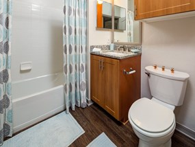 Spacious Bathrooms at Legacy at Fort Clarke apartments in Gainesville, Florida 32606