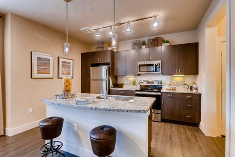 Modern Kitchen with Stainless Steel Appliances & Espresso-Wood Cabinetry