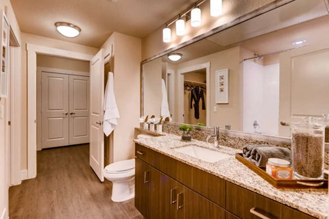 Bathrooms with Undermount Sinks and Espresso-Wood Cabinetry