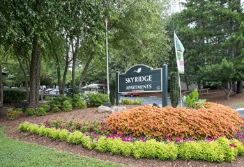 107 Skyridge Dr Studio-2 Beds Apartment for Rent Photo Gallery 1