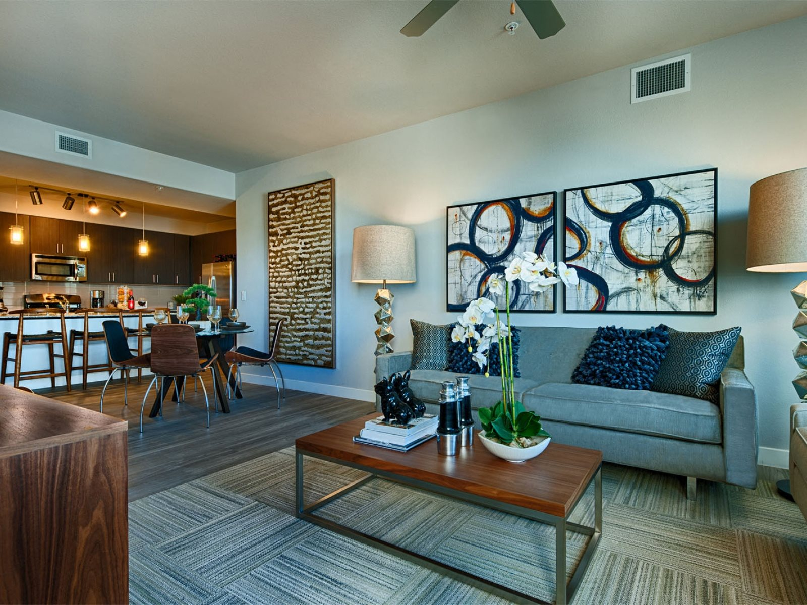 Tempe Apartments for Rent - Skywater at Town Lake Living Room