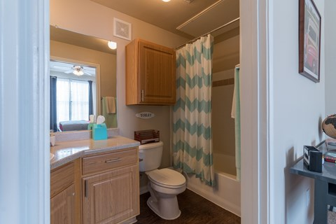 Bathrooms with Extra Storage